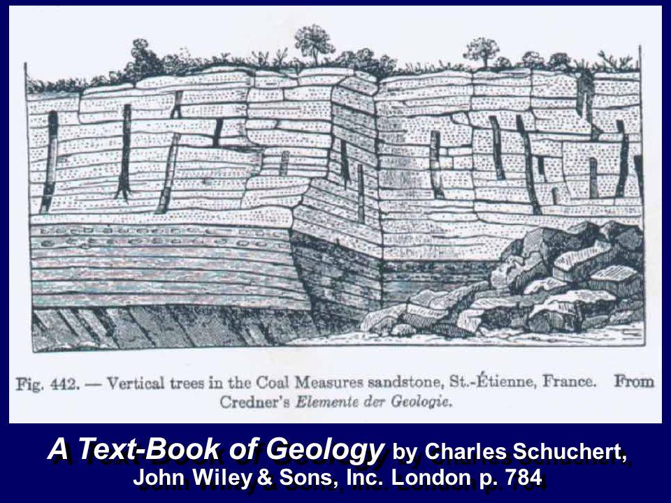 A Text-Book of Geology by Charles Schuchert, John Wiley & Sons, Inc. London p. 784 A Text-Book of Geology by Charles Schuchert, John Wiley & Sons, Inc