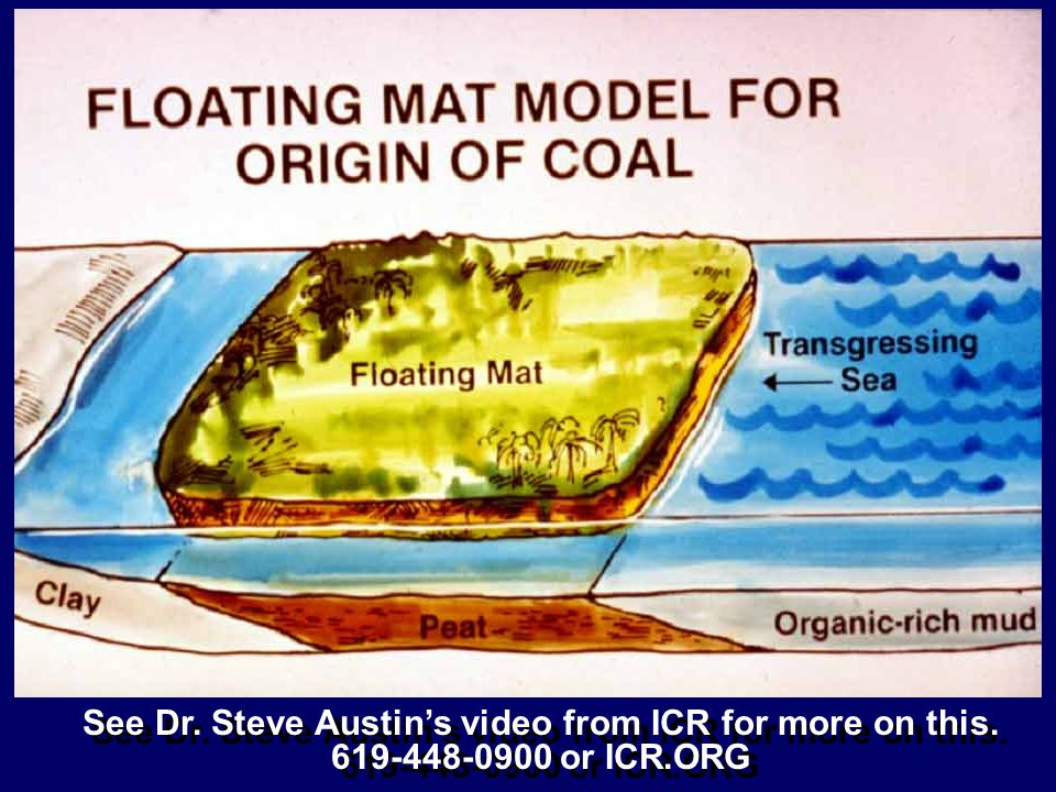See Dr. Steve Austins video from ICR for more on this. 619-448-0900 or ICR.ORG See Dr. Steve Austins video from ICR for more on this. 619-448-0900 or