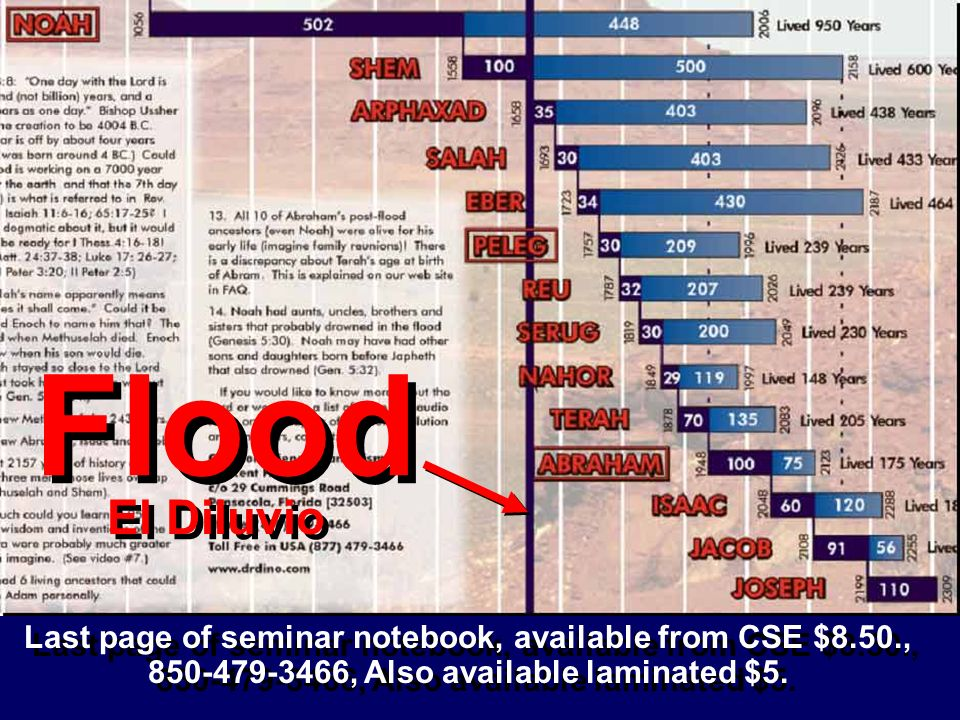 Last page of seminar notebook, available from CSE $8.50., 850-479-3466, Also available laminated $5. Flood El Diluvio