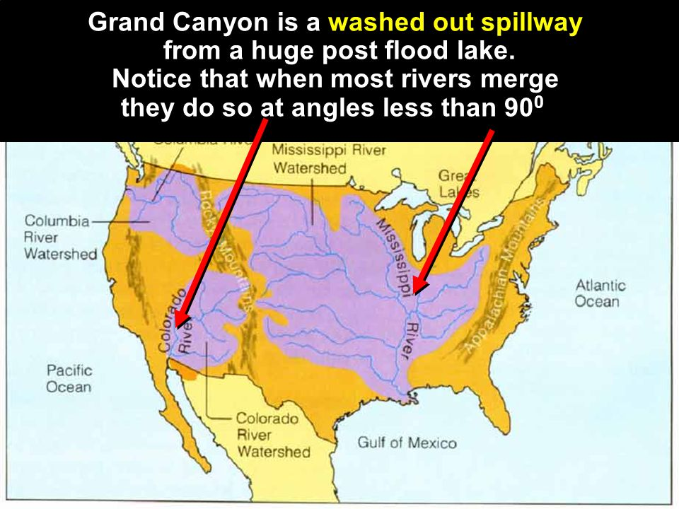Grand Canyon is a washed out spillway from a huge post flood lake. Notice that when most rivers merge they do so at angles less than 90 0