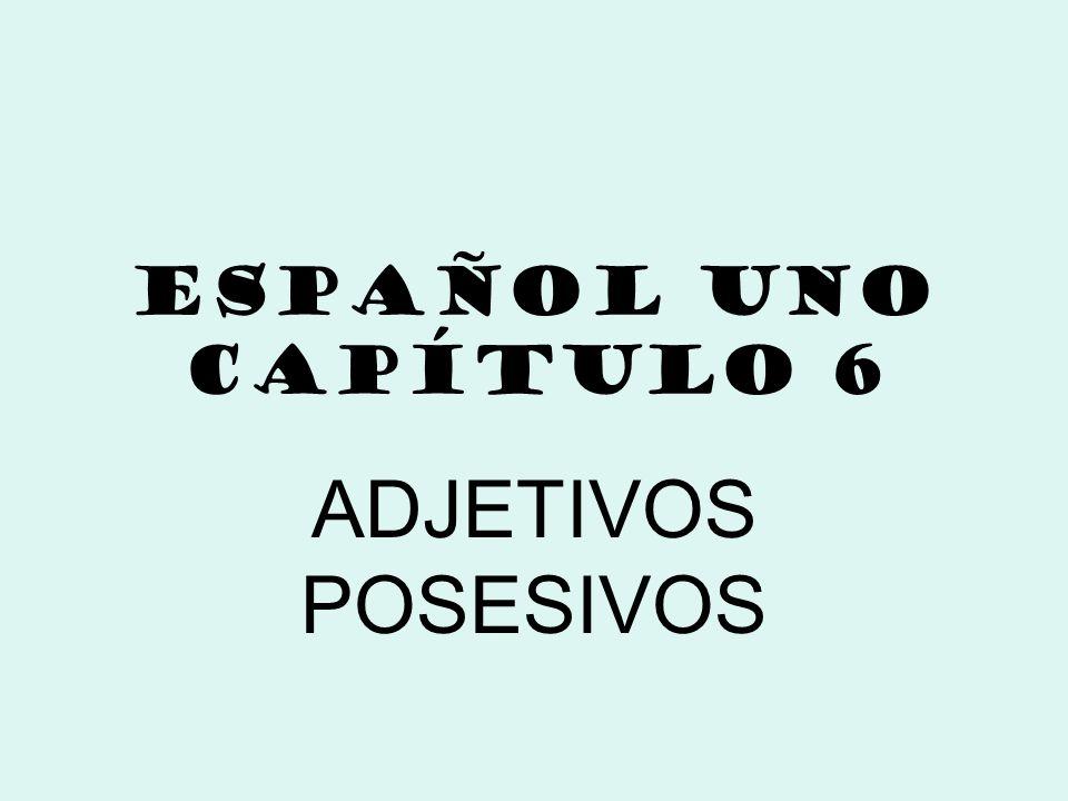 ESPAÑOL UNO CAPÍTULO 6 ADJETIVOS POSESIVOS