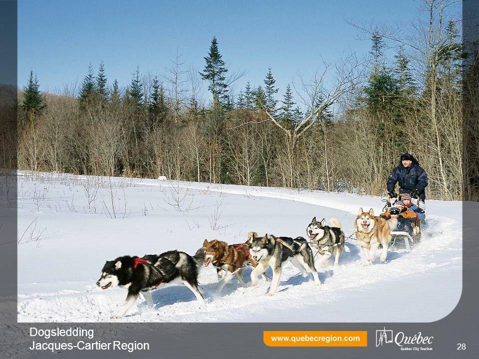 Dogsledding Jacques-Cartier Region 28