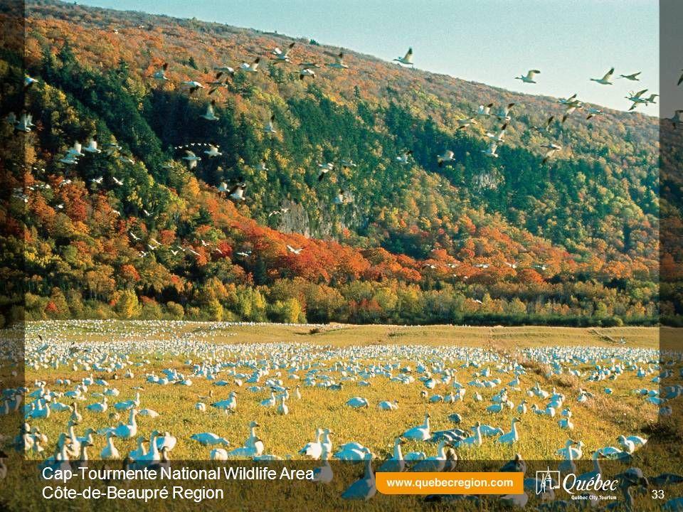 Cap-Tourmente National Wildlife Area Côte-de-Beaupré Region 33