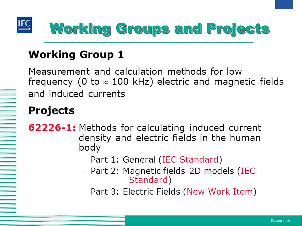 19 June 2006 Working Groups and Projects Working Group 1 Measurement and calculation methods for low frequency (0 to 100 kHz) electric and magnetic fi