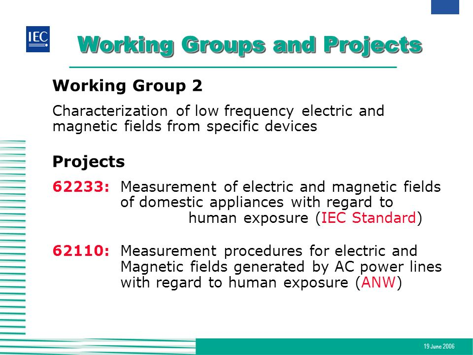 19 June 2006 Working Groups and Projects Working Group 2 Characterization of low frequency electric and magnetic fields from specific devices Projects