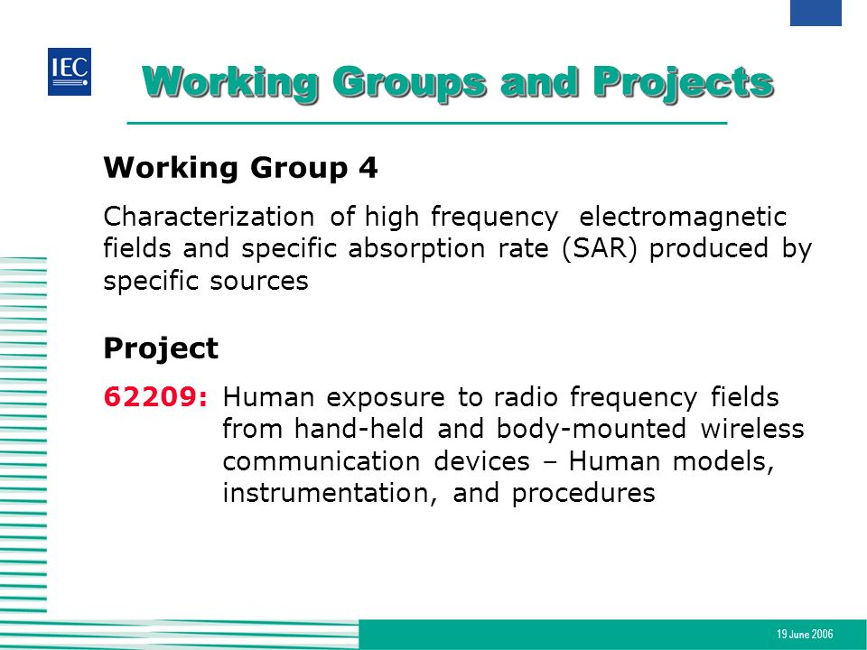 19 June 2006 Working Groups and Projects Working Group 4 Characterization of high frequencyelectromagnetic fields and specific absorption rate (SAR) p