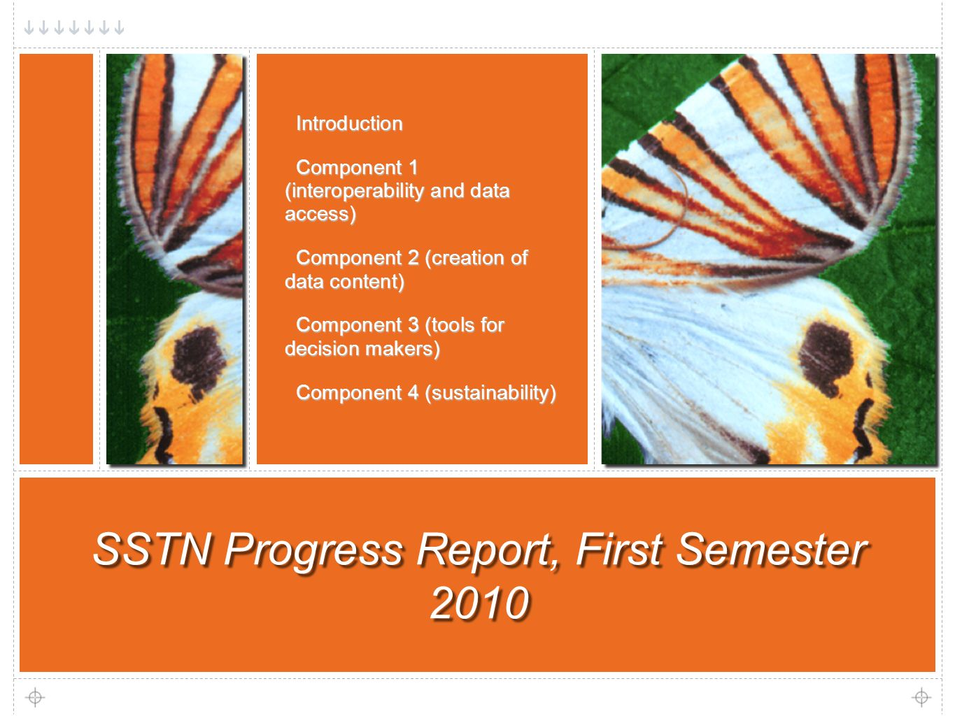 2 SSTN Progress Report, First Semester 2010 Introduction Introduction Component 1 (interoperability and data access) Component 1 (interoperability and