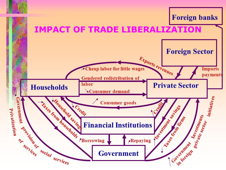 IMPACT OF TRADE LIBERALIZATION Financial Institutions Government Households Private Sector Taxes from households Household savings Consumer goods Cheap labor for little wages BorrowingRepaying Taxes from firms Investment savings Foreign Sector Imports payments Exports revenues Consumer demand Gendered redistribution of labor Credit Government provision of social services Government Privatization of services Foreign banks Investments in foreign private sector initiatives