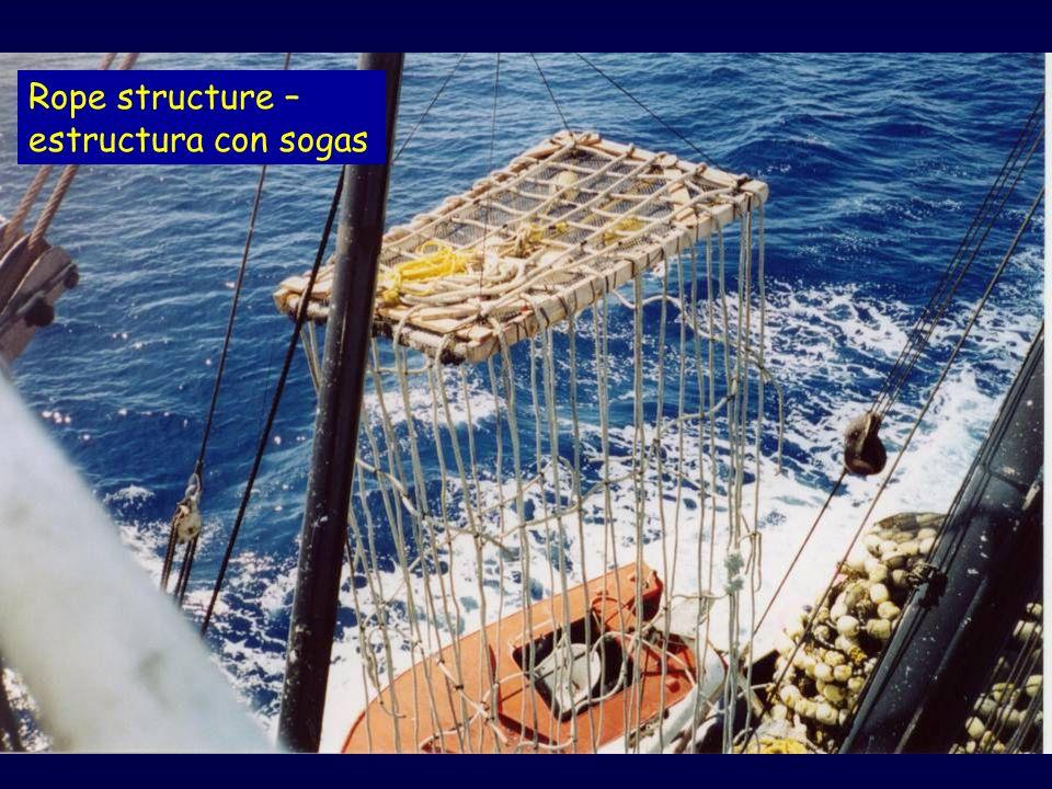 Rope structure – estructura con sogas