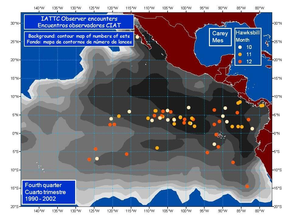 Carey Mes Fourth quarter Cuarto trimestre 1990 - 2002 IATTC Observer encounters Encuentros observadores CIAT Background: contour map of numbers of sets Fondo: mapa de contornos de número de lances