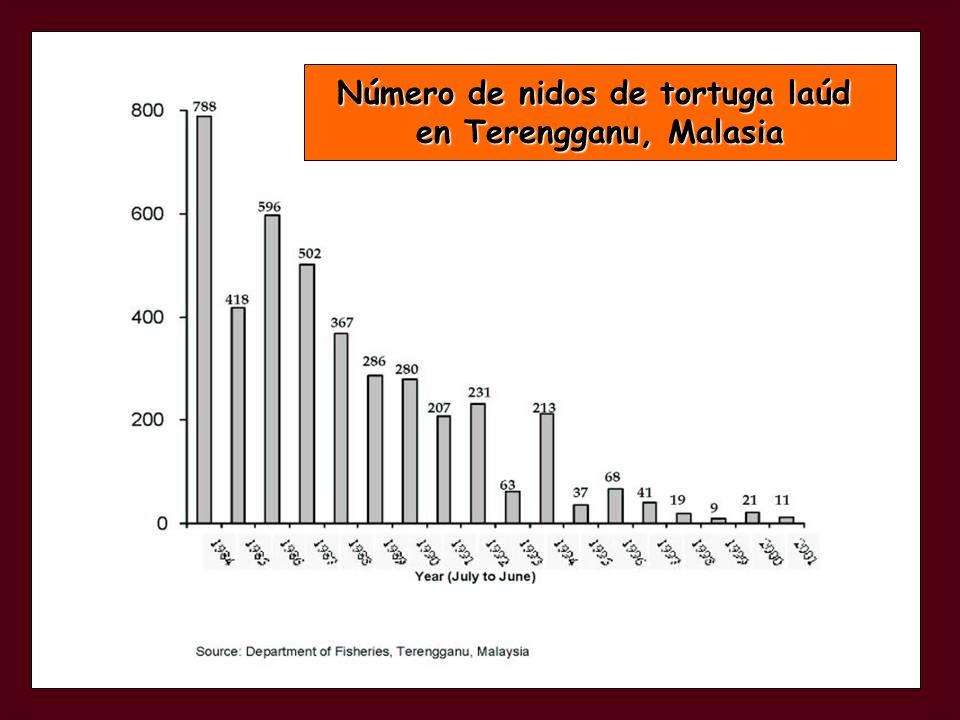 Número de nidos de tortuga laúd en Terengganu, Malasia