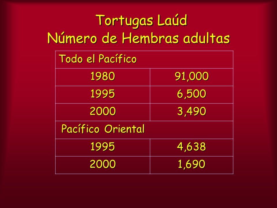 Tortugas Laúd Número de Hembras adultas Todo el Pacífico 198091,000 19956,500 20003,490 Pacífico Oriental Pacífico Oriental 19954,638 20001,690