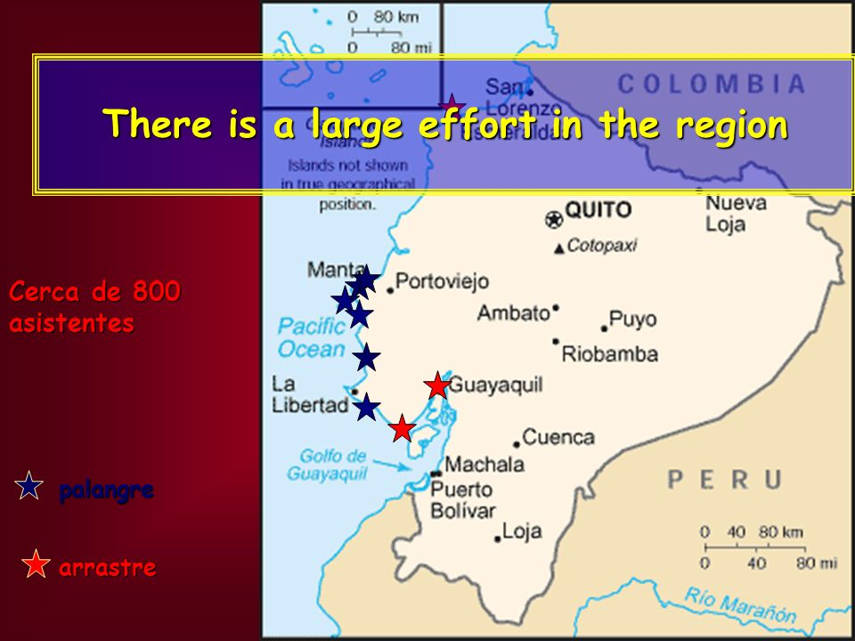palangre arrastre Cerca de 800 asistentes There is a large effort in the region