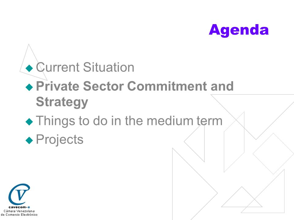 Agenda Current Situation Private Sector Commitment and Strategy Things to do in the medium term Projects