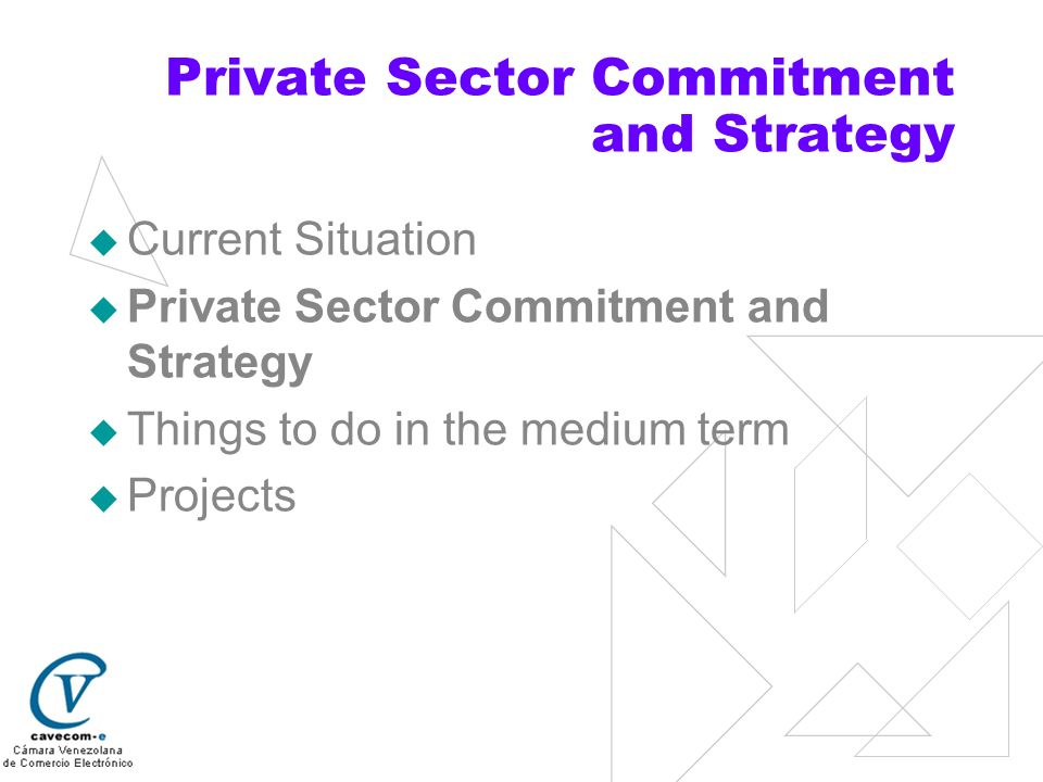 Private Sector Commitment and Strategy To educate and work together with the public sector in creating and formulating new incentive policies to achieve a frictionless economy, a government that only acts to settle disputes, that strengthens proposals for info- architecture, and that meets objectives developed in consensus with society.