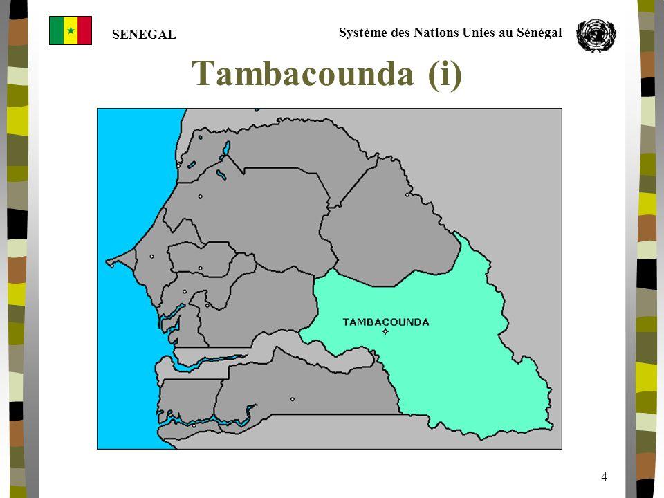 Système des Nations Unies au Sénégal SENEGAL 5 Tambacounda (ii) Indicator ( RNDH 2001) TambacoundaSenegal Population520.000 (2000) 10.000.000 Poverty Indicator (less than 1 U$/day) 54.8% (2002) 48.5% (2002) HDI0.4 % (1999) 0.43% (1999) HPI56.8%43.83% (1999) Child Mortality (0-4)181.9 (1999) 145.3 (1999)