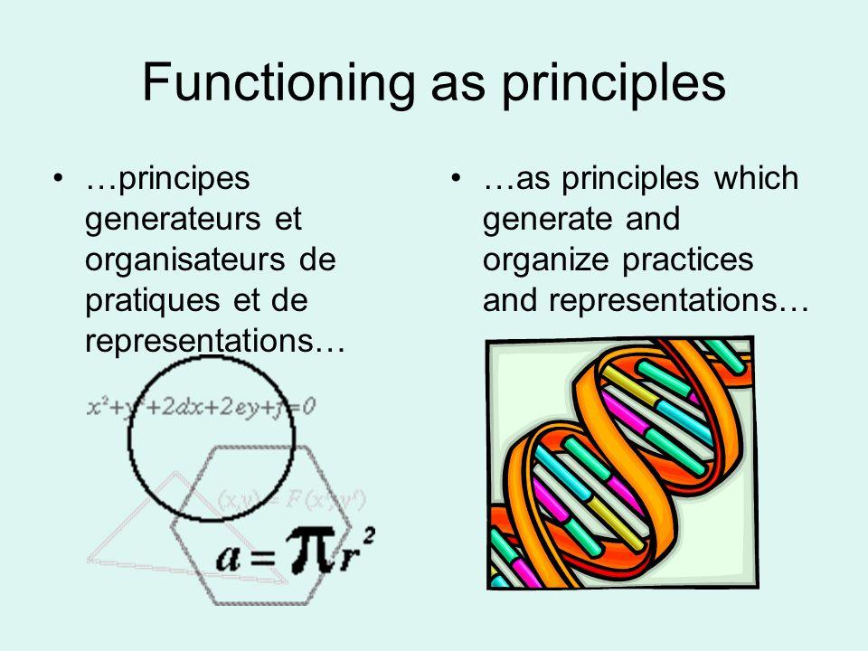 Functioning as principles …principes generateurs et organisateurs de pratiques et de representations… …as principles which generate and organize pract