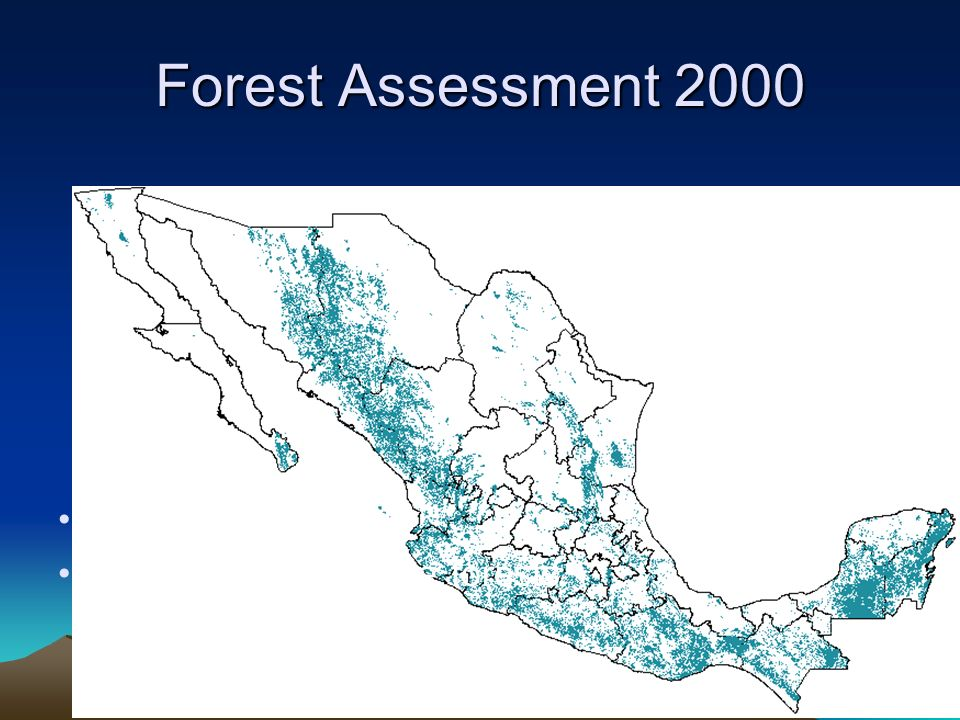 Temperate and Tropical Forests