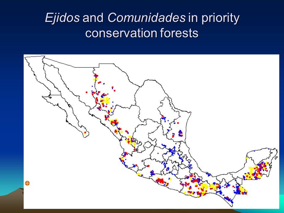 Social ownership: Ejidos and Comunidades