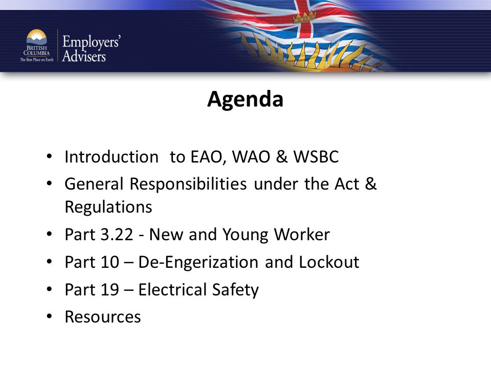 Agenda Introduction to EAO, WAO & WSBC General Responsibilities under the Act & Regulations Part 3.22 - New and Young Worker Part 10 – De-Engerization and Lockout Part 19 – Electrical Safety Resources