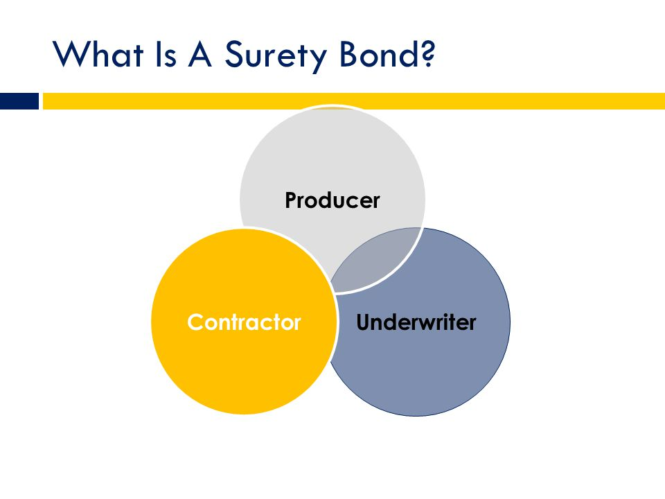 What Is A Surety Bond Underwriter Producer Contractor