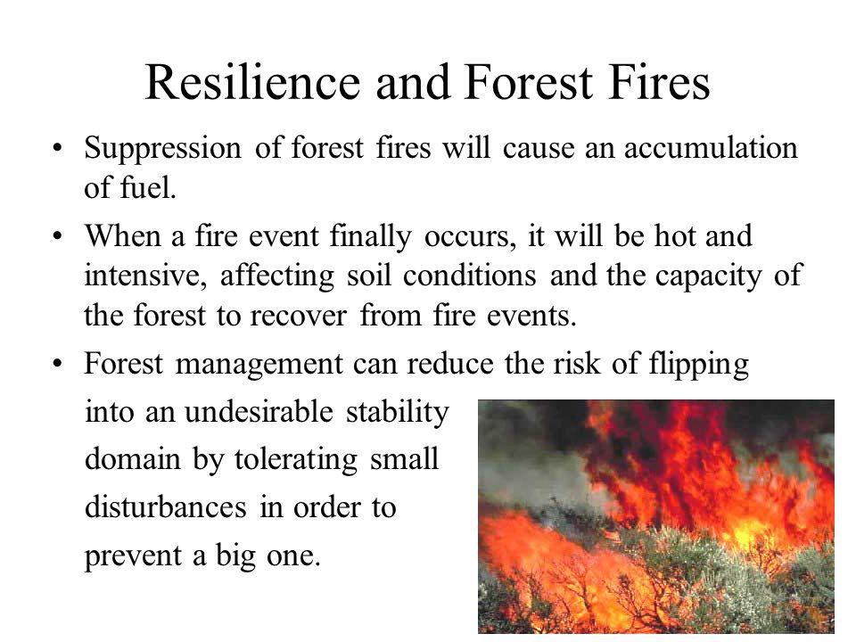 Resilience and Forest Fires Suppression of forest fires will cause an accumulation of fuel.