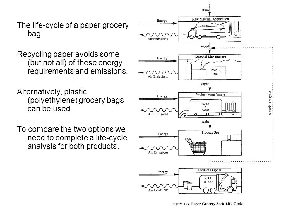 The life-cycle of a paper grocery bag.