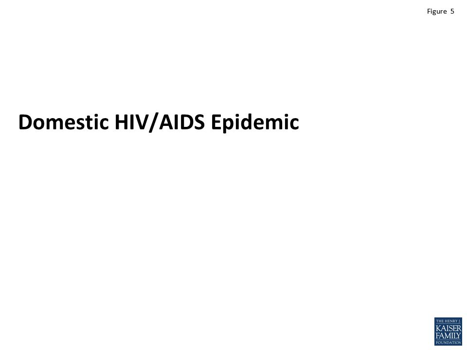 Figure 5 Domestic HIV/AIDS Epidemic