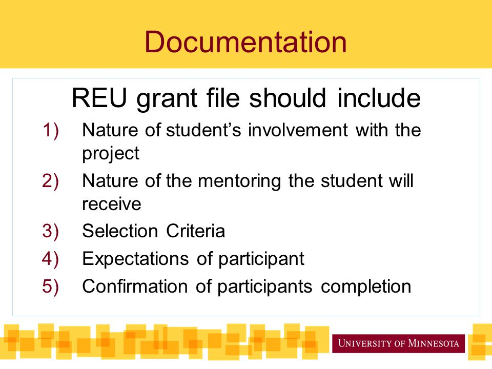 Documentation REU grant file should include 1)Nature of student's involvement with the project 2)Nature of the mentoring the student will receive 3)Selection Criteria 4)Expectations of participant 5)Confirmation of participants completion