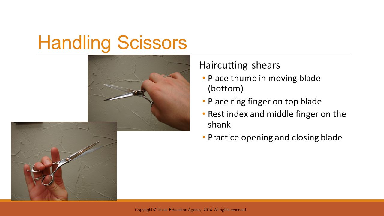 Handling Scissors Haircutting shears Place thumb in moving blade (bottom) Place ring finger on top blade Rest index and middle finger on the shank Pra