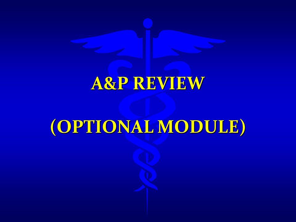 A&P REVIEW (OPTIONAL MODULE)