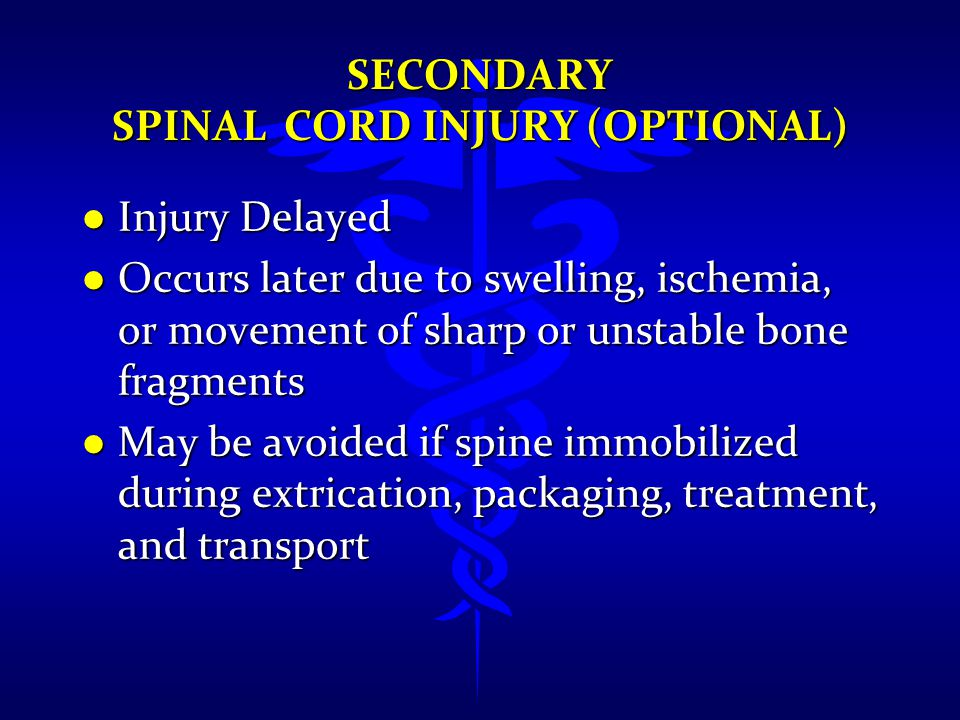 SECONDARY SPINAL CORD INJURY (OPTIONAL) l Injury Delayed l Occurs later due to swelling, ischemia, or movement of sharp or unstable bone fragments l M