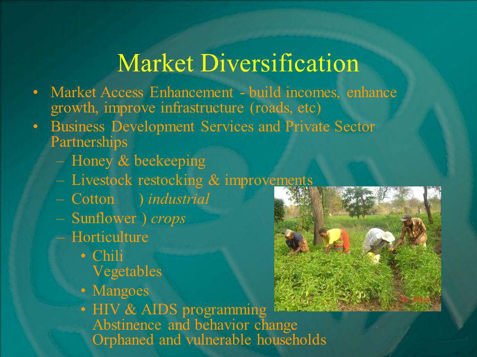 Market Diversification Market Access Enhancement - build incomes, enhance growth, improve infrastructure (roads, etc) Business Development Services and Private Sector Partnerships –Honey & beekeeping –Livestock restocking & improvements –Cotton ) industrial –Sunflower ) crops –Horticulture Chili Vegetables Mangoes HIV & AIDS programming Abstinence and behavior change Orphaned and vulnerable households