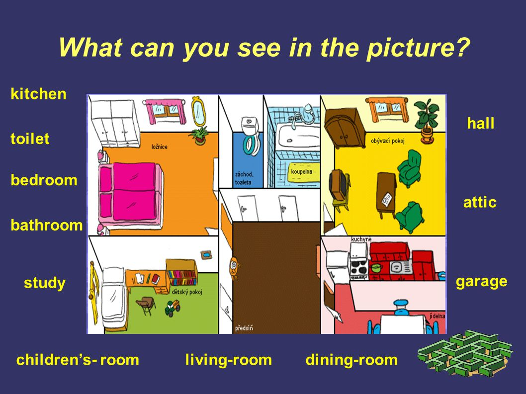 What can you see in the picture? kitchen toilet bedroom bathroom living-roomchildren's- room study garage attic hall dining-room