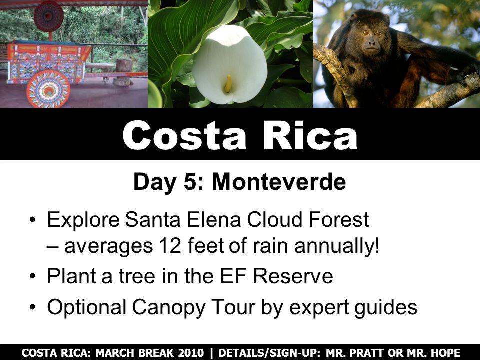 Explore Santa Elena Cloud Forest – averages 12 feet of rain annually.