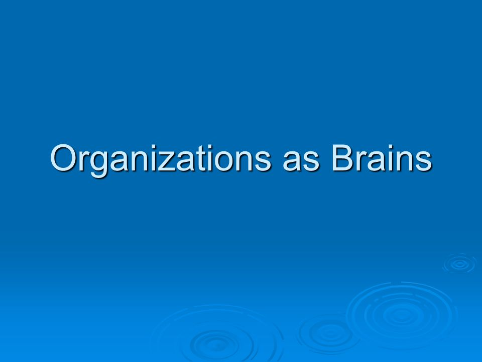 Organizations as Brains