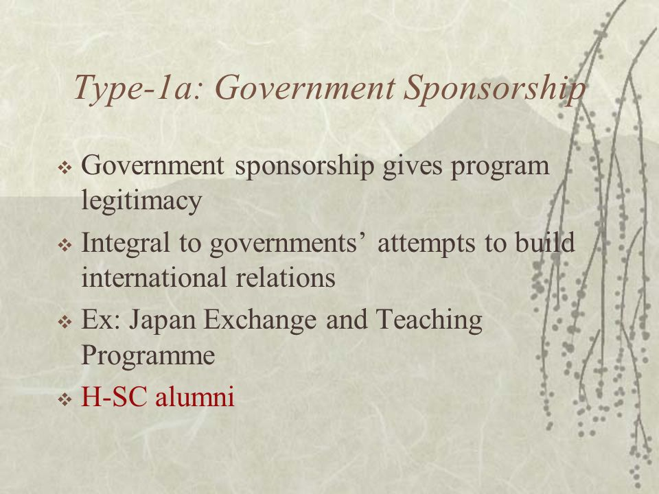 Type-1a: Government Sponsorship  Government sponsorship gives program legitimacy  Integral to governments' attempts to build international relations