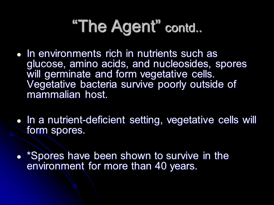 The Agent contd..