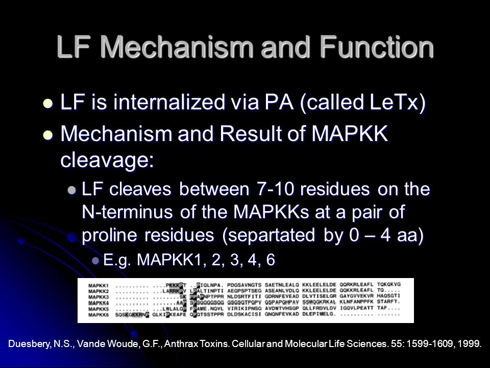 LF Mechanism and Function LF is internalized via PA (called LeTx) LF is internalized via PA (called LeTx) Mechanism and Result of MAPKK cleavage: Mechanism and Result of MAPKK cleavage: LF cleaves between 7-10 residues on the N-terminus of the MAPKKs at a pair of proline residues (separtated by 0 – 4 aa) LF cleaves between 7-10 residues on the N-terminus of the MAPKKs at a pair of proline residues (separtated by 0 – 4 aa) E.g.