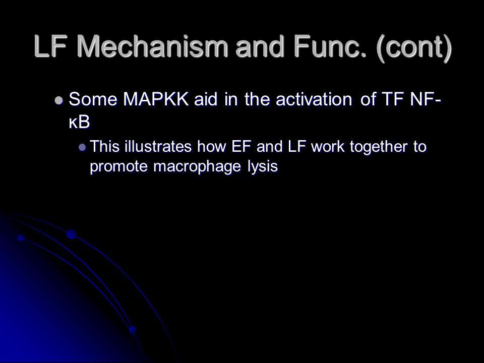 LF Mechanism and Func.