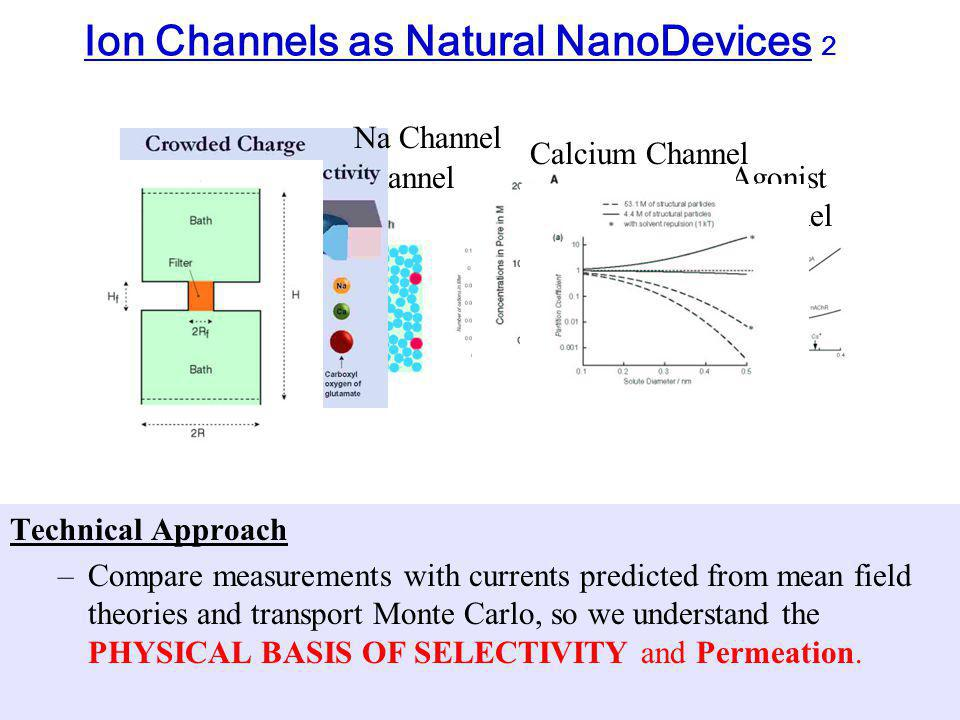 Cl ChannelAgonist Channel Ion Channels as Natural NanoDevices 2 Technical Approach –Compare measurements with currents predicted from mean field theories and transport Monte Carlo, so we understand the PHYSICAL BASIS OF SELECTIVITY and Permeation.