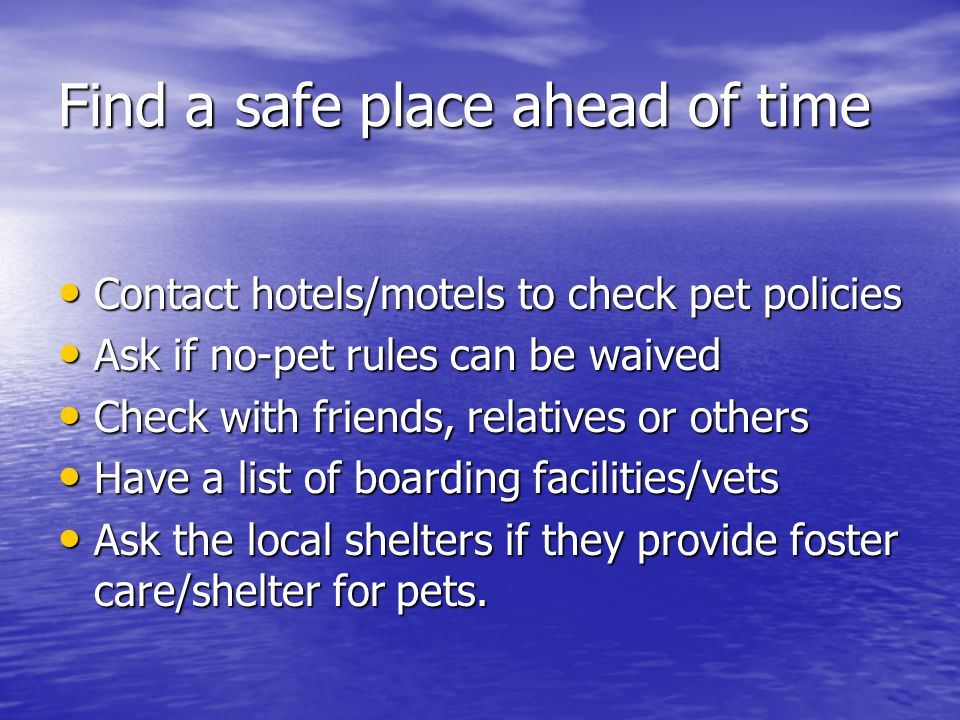 Find a safe place ahead of time Contact hotels/motels to check pet policies Contact hotels/motels to check pet policies Ask if no-pet rules can be wai