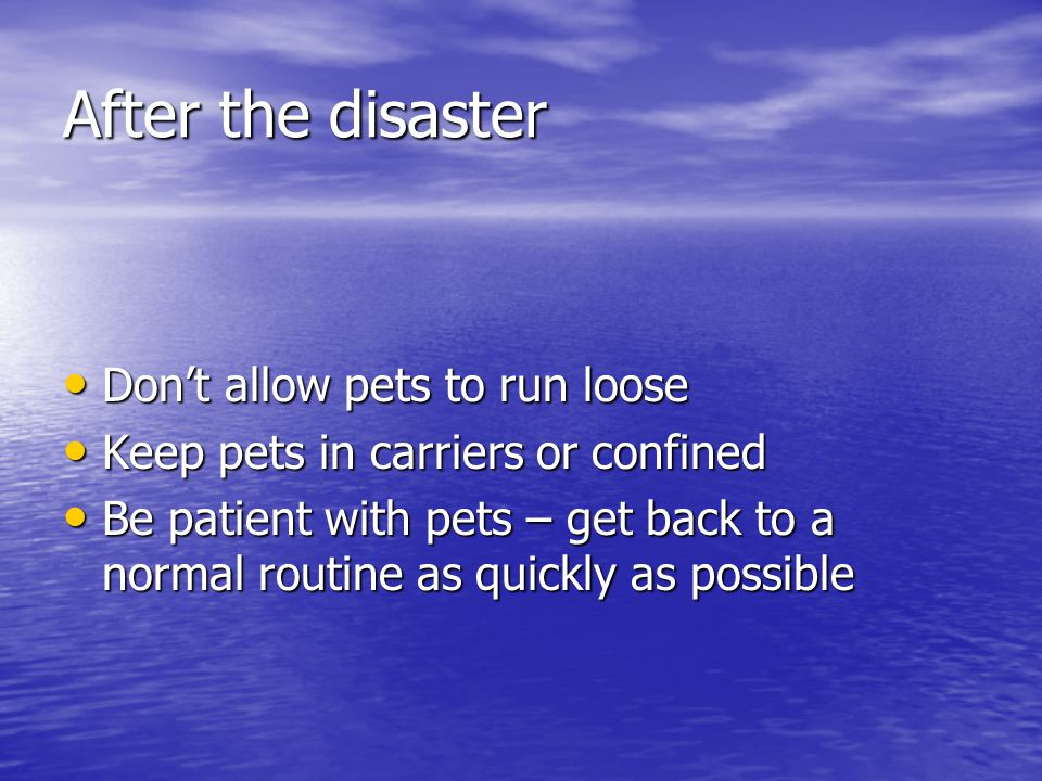 After the disaster Don't allow pets to run loose Don't allow pets to run loose Keep pets in carriers or confined Keep pets in carriers or confined Be