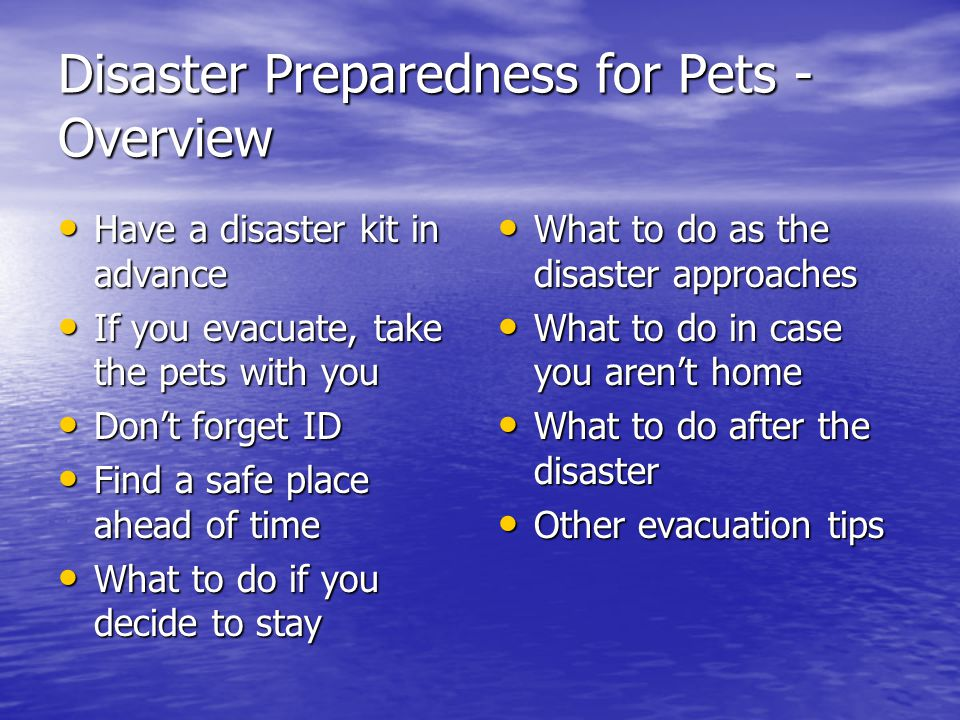 Disaster Preparedness for Pets - Overview Have a disaster kit in advance Have a disaster kit in advance If you evacuate, take the pets with you If you