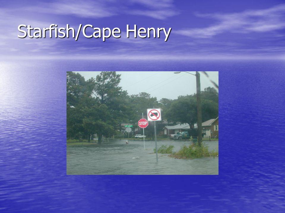 Starfish/Cape Henry