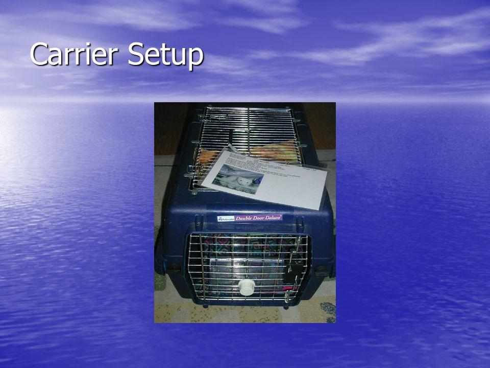 Carrier Setup