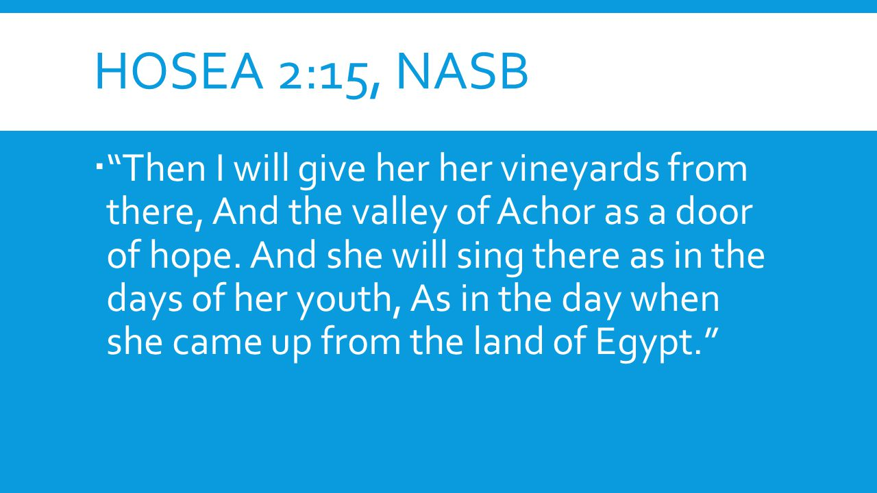 HOSEA 2:15, NASB  Then I will give her her vineyards from there, And the valley of Achor as a door of hope.