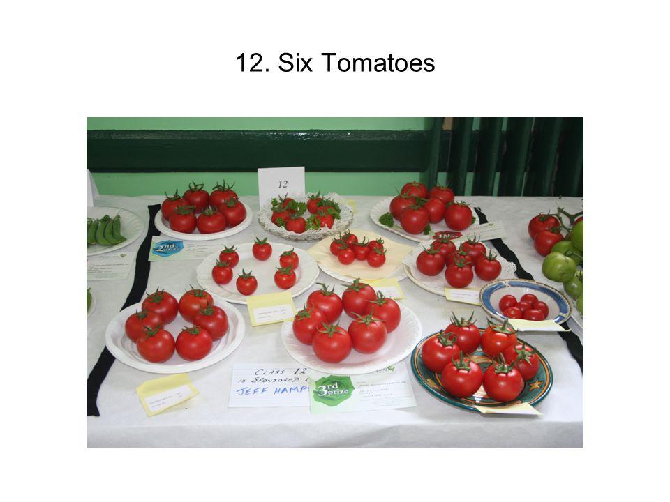 12. Six Tomatoes