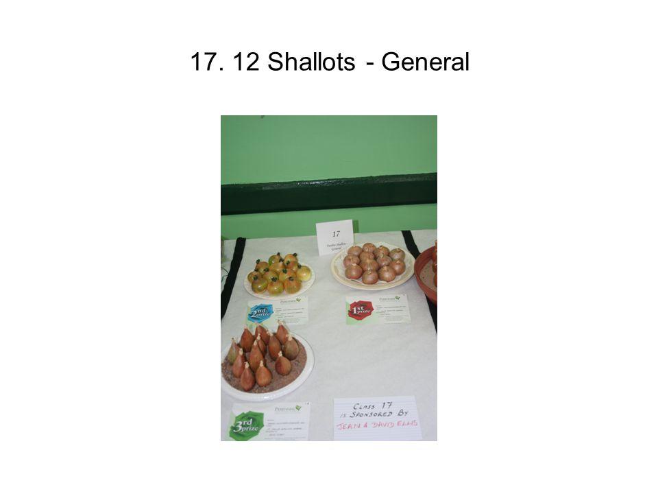 17. 12 Shallots - General
