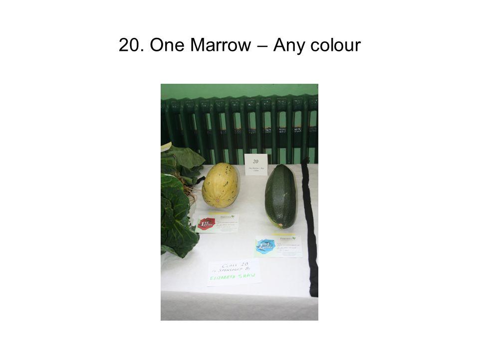20. One Marrow – Any colour